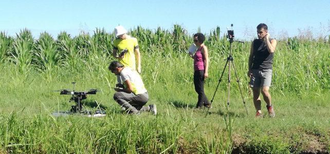 Rilievo con APR di una zona umida agricola presso la Tenuta Civrana